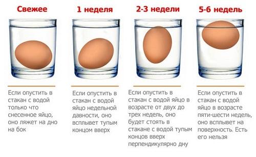 определение свежести яиц самостоятельно